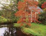Red Barn with Red Maple Tree in Fall