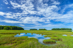 Salt Marsh and Tidal Pool in Barn Island Wildlife Management Area, Stonington, CT