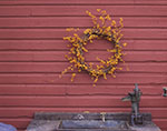 Bittersweet and Grapevine Wreath on Red Barn Wall over Old Water Pump