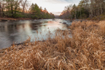 Dried Grasses along Shoreline of Millers River in Late Autumn, near Bearsden Conservation Area, Athol, MA