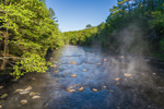 Early Morning Fog on Millers River near Bearsden Forest Conservation Area, Athol, MA