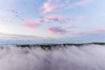 Ground Fog at Sunrise at Thousand Acre Swamp, Phillipston, MA
