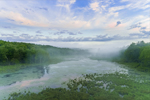 Early Morning Ground Fog over Thousand Acre Brook in Thousand Acre Swamp, Phillipston, MA
