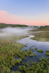 Ground Fog at Sunrise at Thousand Acre Swamp, Phillipston, MA