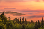 Mountain Peaks Poke through Early Morning Ground Fog in White Mountains at Sunrise, White Mountain National Forest, Woodstock, NH