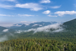 Morning Ground Fog in White Mountains, White Mountain National Forest, Lincoln, NH