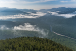 White Mountains in Early Morning Fog, View from Whaleback Mountain, White Mountain National Forest, Lincoln, NH