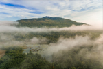 Early Morning Ground Fog over Mount Monadnock and Wetlands along Dole Brook, Jaffrey, NH
