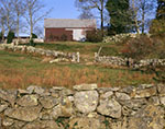 Stonewalls and Old Barn in Late Fall