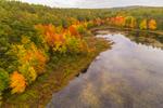 Colorful Fall Foliage along Shoreline of Hopkinton-Everett Reservoir, Hopkinton, NH