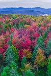 Colorful Fall Foliage in White Mountain National Forest, View from Woodstock, NH