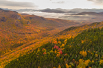 Colorful Fall Foliage in White Mountain National Forest, View from Mount Waternomee, White Mountains Region, Woodstock, NH
