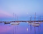 Moonlight over Sailboats in Vineyard Haven Harbor