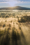 Sun Rays through Ground Fog over Forests with Mount Monadnock in Distance, Marlborough, NH