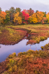 Brilliant Fall Foliage along Powder Mill Pond, Hancock, NH