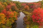 Brilliant Fall Foliage along Nubanusit Brook, Harrisville, NH