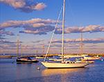 Sailboats in Vineyard Haven Harbor