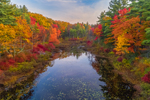 Early Morning Light Shines on Brilliant Fall Foliage along Paradise Pond, Leominster State Forest, Princeton, MA