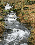 Cascades in Small Tributary of the Swift River