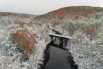Millers River and Bearsden Forest Conservation Area after Late Autumn Snowfall, Athol, MA