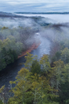 Morning Ground Fog over Millers River and Bearsden Forest Conservation Area, Athol, MA