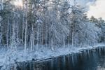 Mamjohn Pond Reservoir (aka Cowee Pond) after Fresh Snowfall, Gardner, MA
