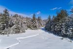 Frozen Wetlands in Green Mountain National Forest, Green Mountains Region, Peru, VT