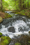 Waterfalls on King Brook, Kenneth M. Dubuque Memorial State Forest, Hawley, MA