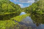 Fivemile River in Spring, Killingly, CT