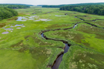 Tidal Creek and Tidal Pools in Salt Marshes on Tributary of Morse River, Phippsburg, ME