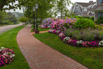 Colorful Hydrangeas at Cottages of Chatham Bars Inn, Cape Cod, Chatham, MA