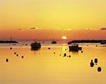 Sun Rising over Boats in Rye Harbor