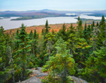 Mooselookmeguntic and Cupsuptic Lakes, View from Bald Mountain, Rangeley, ME