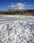 Snow-covered Wetlands with Mt. Monadnock in Background