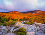 Mt. Katahdin in First Light of Day, View from Chimney Pond Trail, Baxter State Park, ME