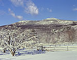 Farm, Orchard and Mt. Monadnock in Winter