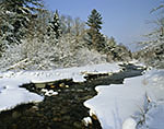 Wild Ammonoosuc River in Winter