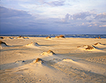 Late Light on Dunes and Beach, Pea Island National Wildlife Refuge, Cape Hatteras National Seashore,