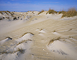 Dunes (Large and Small) at Pea Island National Wildlife Refuge  Cape Hatteras National Seashore,