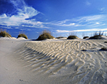 Blue Sky and Cirrus Clouds over Wind-swept Dunes at Pea Island National Wildlife Refuge, Cape Hatteras National Seashore,