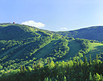 Cannon Mountain Ski Slopes in Summer, White Mountains,