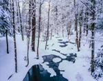 Middle Branch Swift River after Fresh Snowfall, Quabbin Reservation, New Salem, MA