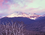 Snow-covered Mt. Adams at Sunrise, Presidential Range, Greens Grant, NH