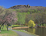 Spring Blooms and East Peak of Hanging Hills with Castle Craig at Hubbard Park, National Register of Historic Places