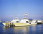Power Boats at Dock, Champlin's Hotel, Marina and Resort, Great Salt Pond
