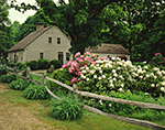 Old Colonial House with Wooden Split-rail Fence and Rhododendrons at Weber Hill Farm, Circa 1750
