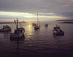 Boats at Sunset with Dark Clouds and Sun Reflecting on Water, Criehaven Harbor, Ragged Island
