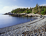 Spruce Forest and Cobblestone Beach at Deep Cove, Isle au Haut