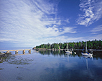 View of Duck Harbor with Sailboats and Ferry Dock, Isle au Haut