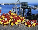 Red and Yellow Lobster Buoys and Lobster Traps on Pier, Criehaven Harbor, Ragged Island